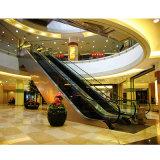 공중 쇼핑 센터 쇼핑 카트 에스컬레이터 및 이동하는 도보
