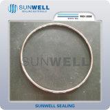 Un tipo ovale guarnizione dei 2016 nuovi prodotti della giuntura dell'anello