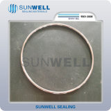 2017 Gezamenlijke Pakking van de Ring van het Type van nieuwe Producten de Ovale