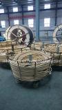 Le fil d'acier a tressé le boyau en caoutchouc hydraulique couvert par caoutchouc renforcé (SAE100 R1-19at)