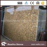Encimera de la casa prefabricada del granito de Giallo Fiorito