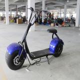 Корабль Harley 1000With800W кокосов города взрослый дешевый электрический