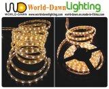CE EMC LVD RoHS dos años de garantía, luz de tira del RGB (LED SMD flexible 5050)