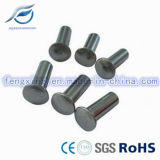De aangepaste Vlakke Hoofd Semi Tubulaire Klinknagels van het Roestvrij staal