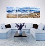 高品質のホーム商品の現代景色の芸術の絵画
