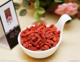 Gojiのドライフルーツ及び中国のWolfberry