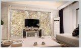 Profils de moulage massif en marbre en PVC à finition UV colorée pour mur / TV / porte Fram