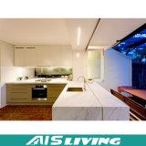 Gabinetes de cozinha de madeira duráveis da mobília Home (AIS-K296)