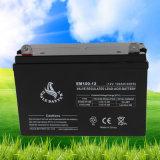 12V 100ah Stromversorgung nachladbare VRLA Mf AGM-Leitungskabel-Säure-Batterie für Telekommunikation
