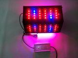 150W 360 둥근 LED는 야채와 과일을%s 가볍게 증가한다