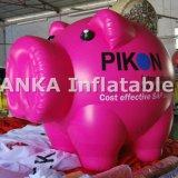 분열식 팽창식 판지 분홍색 돼지 모양 풍선 구체