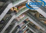 Escalera móvil de la caminata móvil de la alameda de compras del precio de fábrica
