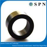 De ceramische Ringen van de Magneet van het Ferriet Permanente Veelpolige voor het Stappen Motor