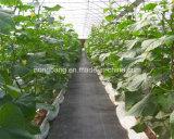 Tessuto del coperchio al suolo di controllo di Weed