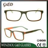 Het populaire Frame van het Schouwspel van het Oogglas Eyewear van de Acetaat In het groot Optische Sr6038