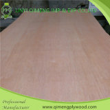Pappel Core 3mm PA Plywood mit Competitive Price und Quality