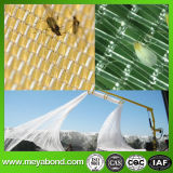 果樹園の網の日曜日の陰のネットの反昆虫