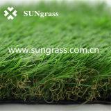 庭または景色(SUNQ-AL00049)のためのシミュレーションの泥炭のカーペット