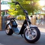 Motor sin cepillo eléctrico de la vespa 1200W de Ecorider Harley para la venta