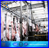 Moutons Slaughter House Goat Abattoir Equipment Line pour Black Goat Lamb Mutton Meat Production Machinery