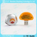 최신 판매 일요일 모양 플라스틱 2GB USB 지팡이 (ZYF1278)