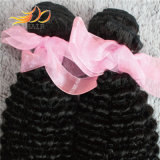 8A高品質のペルーのバージンの人間の毛髪のねじれたカールのTanglefreeの毛のよこ糸