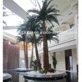 высокая искусственная поддельный синтетическая пальма 9meters