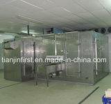 IQF sondern gewundene Tiefkühlverfahren-Maschine aus