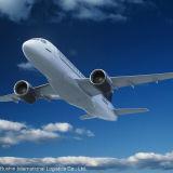 Expédition de fret aérien de Chine Tosanto Domingo, république dominicaine