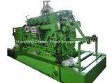 Biomasse de groupe électrogène de gazéification de paille d'énergie renouvelable comme essence
