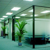 Janela / Architectural / Wall Glass / Float Glass