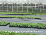 PPの地被植物、Weedのマット、雑草防除ファブリック