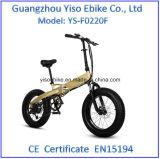 E-Bici gorda de la nieve del deporte con el Gasbag-Tipo amortiguador de choque
