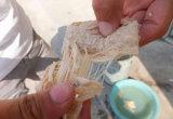 Мясо сои/Defatted машины еды протеина сои