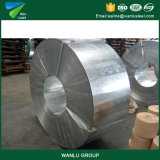 Las compras en línea calientes laminaron las bobinas de acero de la tira de /Cr de la tira de acero galvanizada/de la bobina de acero