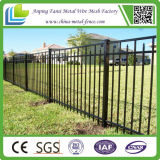 Schwarzes Powder Coated Ornamental Iron Picket Fence für Amerika