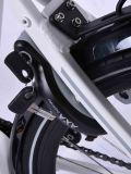 2017 [700ك] عجلة حجم درّاجة جديدة كهربائيّة (مع شهادة)