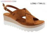 Sandali dell'alto tallone delle signore di prezzi bassi della foto dei sandali delle signore di modo