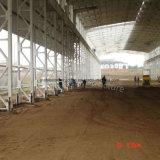 Anti-corrosión de la Industria Química prefabricada Taller de acero con Niza calidad