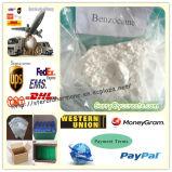 De lokale Drug Benzocaine van het Verdovingsmiddel; Lidocaine; Procaine (CAS 94-09-7)