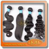 Podem ser as partes brasileiras do cabelo do Virgin do descorante