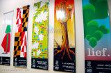 Крытое вертикальное знамя винила PVC украшения стены Hang для рекламировать