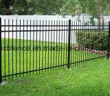 입히는 분말로 검술하는 안전 강철 담 또는 정원