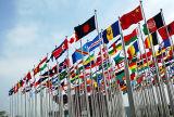주문을 받아서 만들어진 디자인 국기 또는 Flying Flag or Company 깃발