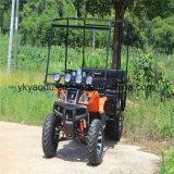 250cc 샤프트 드라이브 사람을 배치된 ATV