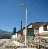 Lampe solaire chaude toute de jardin de la vente 10W dans une seule