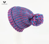 Thinsulate Hat de mode de Madame de Winter Knitted