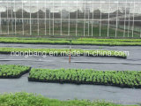 農業Cmaxのための高品質のWeedの障壁ファブリック