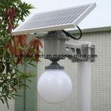 Lumière solaire complète de la bille 5W