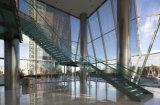 Escadaria espiral interna de vidro barata do aço inoxidável do preço/escadaria de vidro com longarina da escadaria